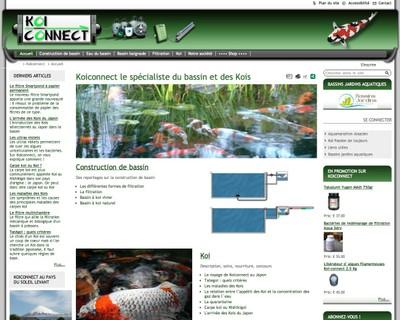 Vue du site de Koiconnect.com