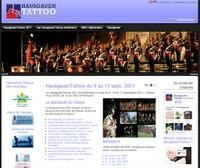 Vue du site www.hausgauentattoo.fr